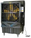 Охладитель воздуха Master BC 220 в Саратове